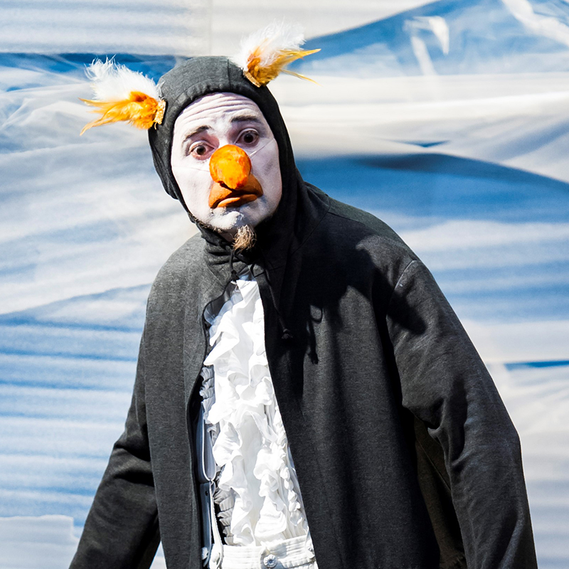 Theater: Theater Asou - Winziggroßer Ping Pong Pinguin